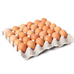 Large Eggs 30 Pack